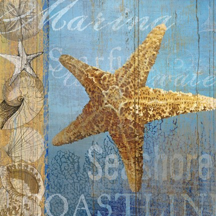 Framed Starfish and sea Print