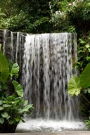 Singapore, National Orchid Garden, Waterfall  Fine Art Print