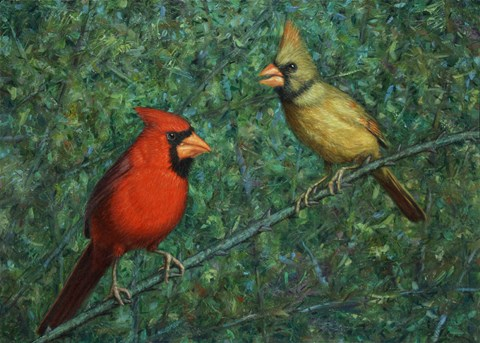Framed Cardinal Couple Print