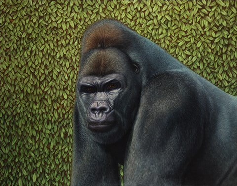 Framed Gorilla With A Hedge Print