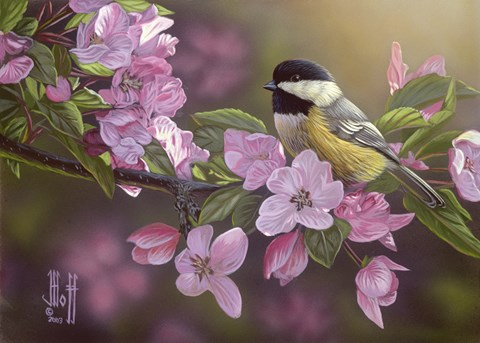 Framed Pretty in Pink - Chickadee Print