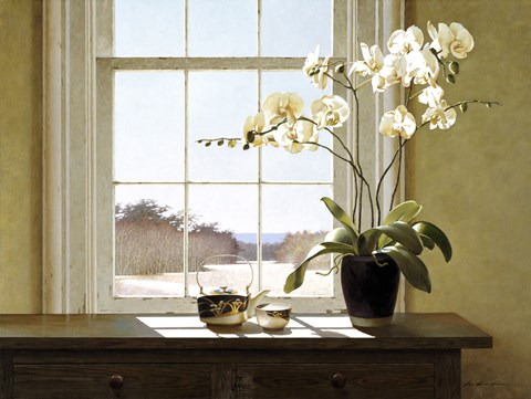 Framed Orchids In The Window 2 Print