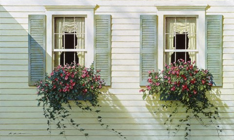 Framed Windows With Flowerboxes Print