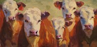 Party of Five Herefords  Fine Art Print