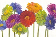 Colorful Gerbera Daisies Art