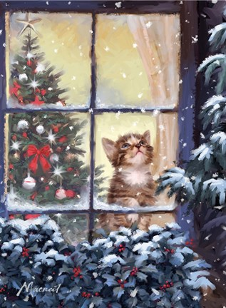 Framed Kitten And Snow Print