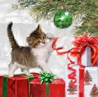 Kitten And Present  Fine Art Print