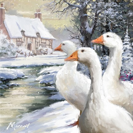 Framed Geese By Stream Print