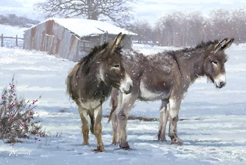 Framed Donkey Pair Print