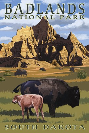 Framed Badlands National Park Wilderbeest Print