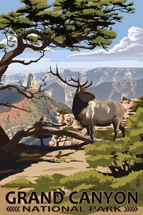Framed Grand Canyon Park Elk Print
