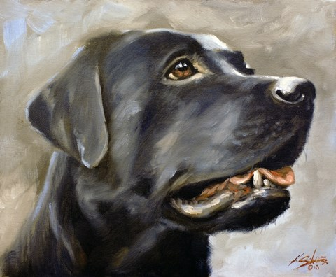Framed Black Lab 2 Print