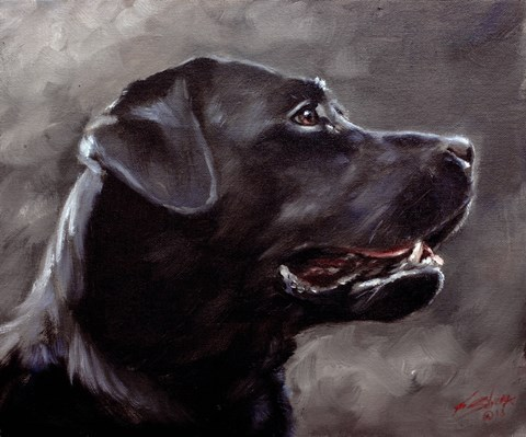 Framed Black Lab 5 Print