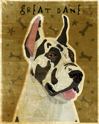 Framed Harlequin Great Dane 1 Print