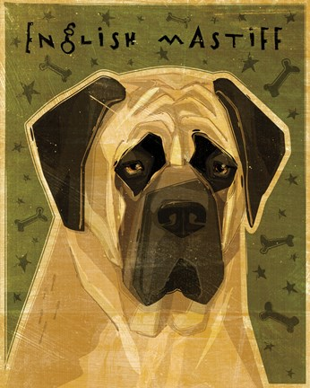 Framed English Mastiff Print