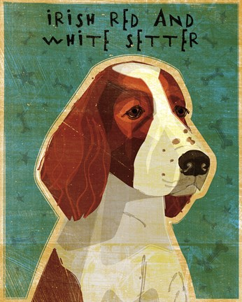 Framed Irish Red and White Setter Print