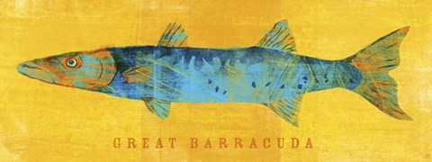 Framed Great Barracuda Print