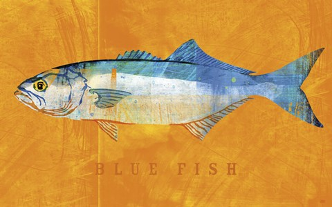 Framed Bluefish Print