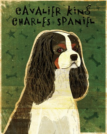Framed Cavalier King Charles (tri-color) Print