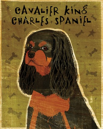 Framed Cavalier King Charles (black and tan) Print