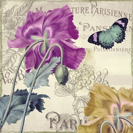 Framed Petals of Paris III Print