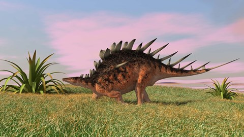 Framed Kentrosaurus Walking across Grasslands Print