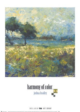 Framed Harmony of Color I Print