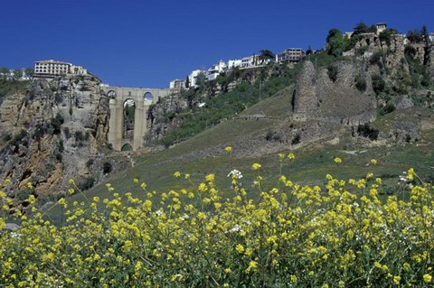 Framed Wildflowers in El Tajo Gorge and Punte Nuevo, Ronda, Spain Print