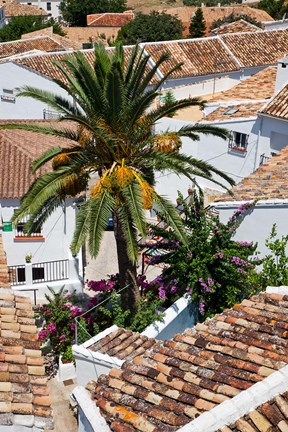 Framed Spain, Andalusia, Zahara Rooftops in the Andalusian White Village Print