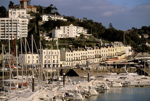 Framed View of Marina and Town from Torquay Pier, Torquay, Devon, England Print