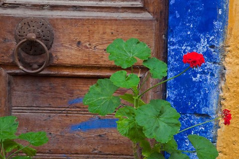 Framed Geraniums and old door in Chania, Crete, Greece Print