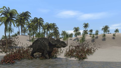 Framed Triceratops Walking along the Shoreline 1 Print