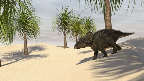 Framed Triceratops Walking in a Tropical Environment 2 Print