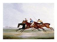 The Finish  Fine Art Print