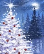 White Xmas Tree  Fine Art Print