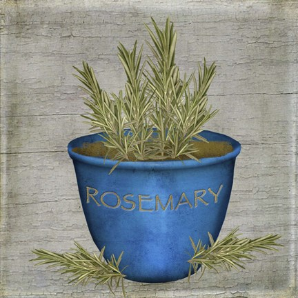 Framed Herb Rosemary Print