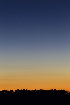Framed Comet Panstarrs at twilight,  Buenos Aires, Argentina Print