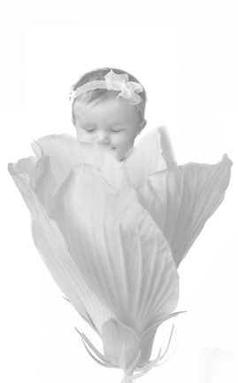 Framed Baby And White Petals Print
