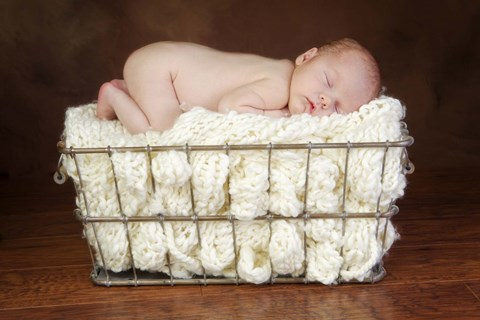 Framed Baby In Knit Basket White Print