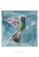 Watercolor Hummingbird I  Fine Art Print