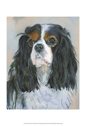 Framed Woody Tricolor CKC Spaniel Print