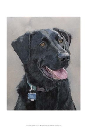 Framed Maddie Black Lab Print