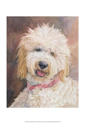 Framed Honey Goldendoodle Print