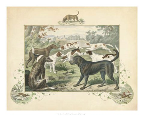 Framed Group of Hounds Print