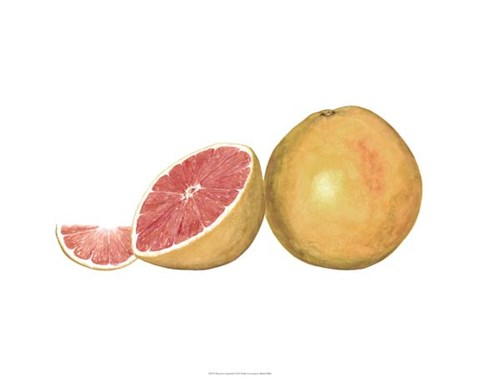 Framed Watercolor Grapefruit Print