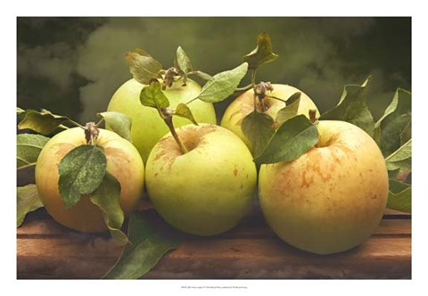 Framed Jill's Green Apples I Print