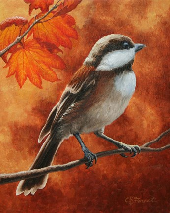 Framed Autumn Chickadee Print