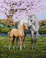 Spring?s Gift  Fine Art Print