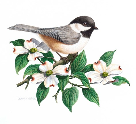 Framed Studio Friends - Chickadee Print