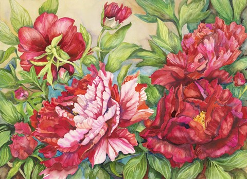 Framed Peonies In Shades of Red Print